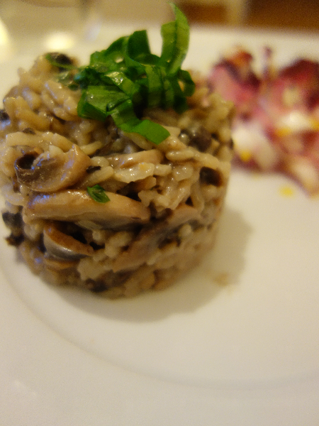 risotto-ours2